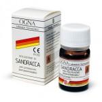 Sandracca-562x562